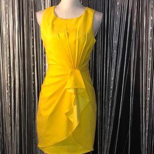 Ark & Co by Anthropologie Bodycon Mini Dress